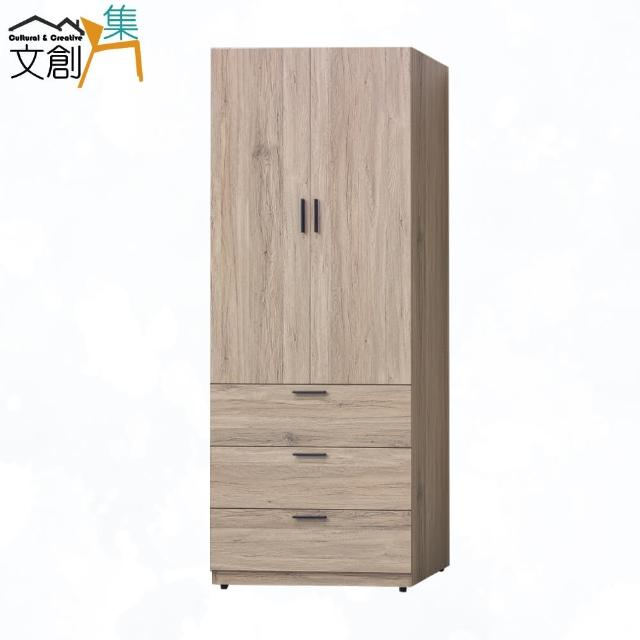 【文創集】岐阜 現代2.5尺二門三抽衣櫃/收納櫃(二色可選)