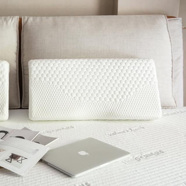 【1/3 A LIFE】枕療室-負磁能專利模塑涼感記憶枕(1入)